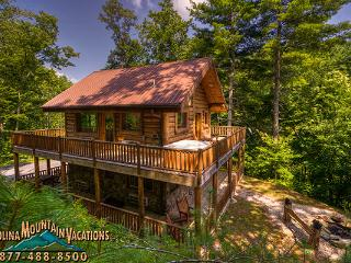 Black Bear Pond Cabin - Bryson City vacation rentals