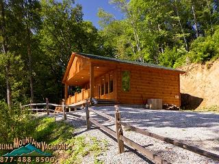 Born to be Wild - Bryson City vacation rentals