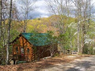 Bryson Bungalow - Bryson City vacation rentals
