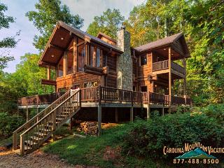 Cabin in the Clouds - Bryson City vacation rentals