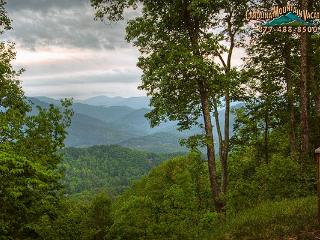 Dream Weaver - Bryson City vacation rentals