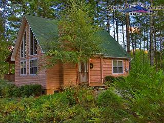 Eagles Nest Cabin - Bryson City vacation rentals