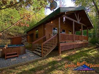 Good Life Cabin 2 - Bryson City vacation rentals