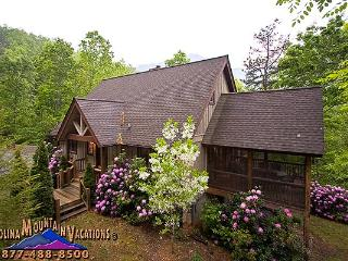 High Top Hideaway - Bryson City vacation rentals
