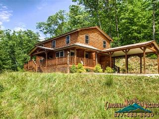 Hogfish Lodge - Bryson City vacation rentals