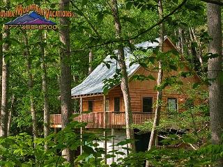 Horton House log cabin - Bryson City vacation rentals