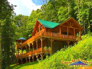 Mountain Retreat - Bryson City vacation rentals