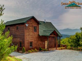 Pine Meadow Lodge - Bryson City vacation rentals