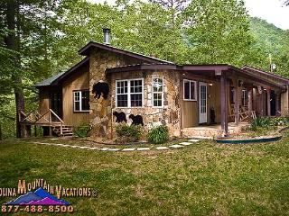Ridge Top Lodge - Bryson City vacation rentals