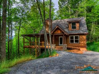 Simplicity Chalet - Bryson City vacation rentals