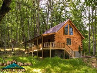 Trot-in Log Cabin - Bryson City vacation rentals