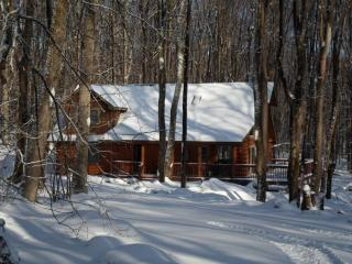 Fern Run Cabin - Great Privacy! Quality Log Cabin - Oakland vacation rentals