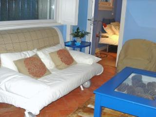 The Bluebird Cottage - Costa de Lisboa vacation rentals