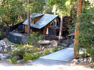 Hillsdale Retreat - Idyllwild vacation rentals