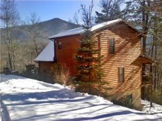 LT - 412 Kimberly Lane - Sylva vacation rentals