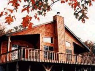 Bella Vista - Sylva vacation rentals