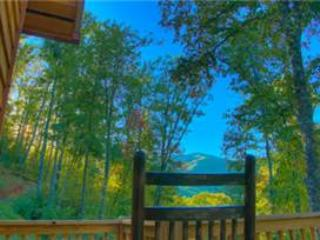 Blackberry Ridge - Sylva vacation rentals
