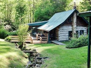 Crackerbox Palace - Sylva vacation rentals
