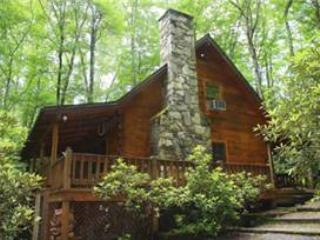 Creekside Bunkhouse - Sylva vacation rentals