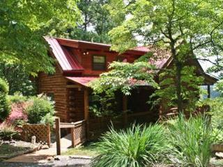 Lazy Bear Lodge - Sylva vacation rentals