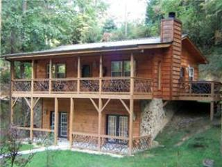 Lone Bear - Sylva vacation rentals