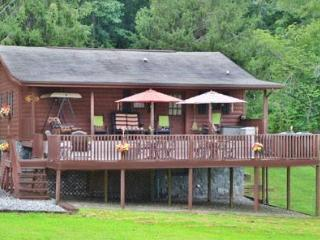 Meadowbrook Log Cabin - Sylva vacation rentals