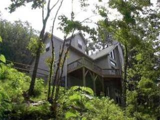 The Ridge Carlton - Sylva vacation rentals