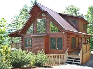 The Summit Lodge - Sylva vacation rentals
