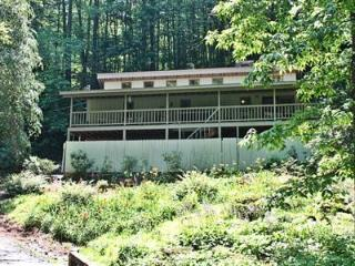Tilley Creek House - Sylva vacation rentals