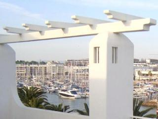 Sea - Terrace - Costa de Lisboa vacation rentals