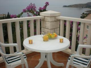 HOLIDAY VILLA IN DUBROVNIK - Croatia vacation rentals