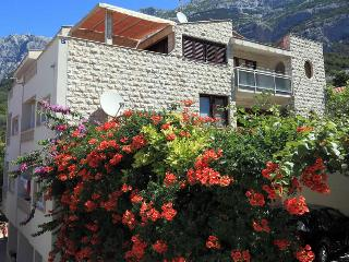 Apartments for rent Surrounded by Beautiful Nature - Croatia vacation rentals