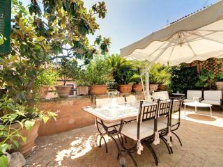 Pantheon Luxury Terrace **** Cocoon Unique (ROME) - Lazio vacation rentals