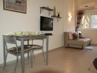 New AMAZING Big Studio on Wiesel near Dizengof - Israel vacation rentals