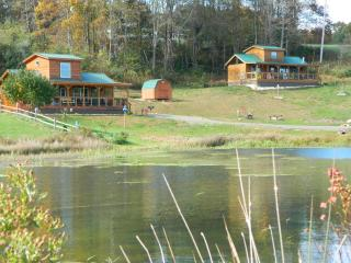 Waterfront  Blue Ridge Parkway Log Cabin - Fancy Gap vacation rentals