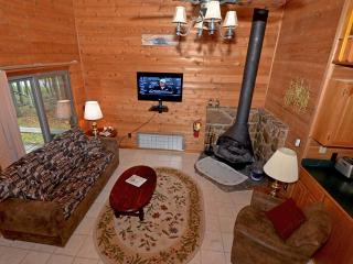 Powder Monkey 12: Fireplace, 2 BR Plus / 2 Bath - West Virginia vacation rentals