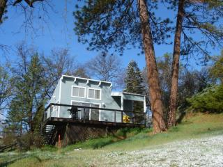 Sequoia Resort  'Artist's Studio' - House Two - Badger vacation rentals