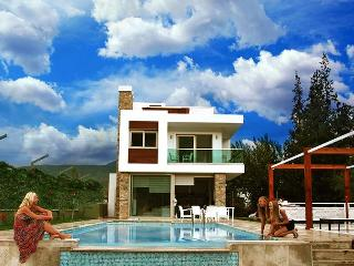 Premium villa; Pool & Mountain View - Aegean Region vacation rentals