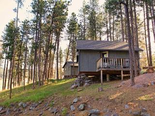 Affordable Cabin Nestled in Pines by Mt Rushmore - South Dakota vacation rentals