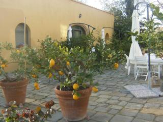 Le Massucce Chianti between Florence and Siena - Chianti vacation rentals