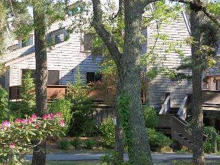 Relaxed Affordable Oak Bluffs- WIFI Privacy Linens - Martha's Vineyard vacation rentals