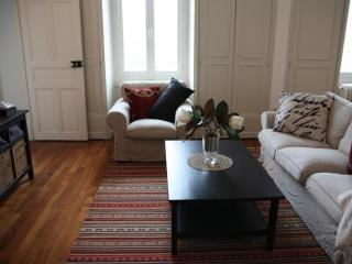 Newly listed 2 bed apartment Dijon views - Burgundy vacation rentals