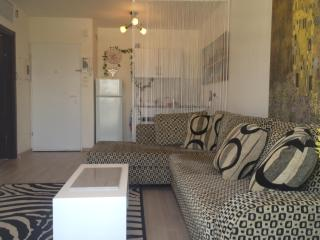 Central Boutique - Prime Location - Tel Aviv - Herzlia vacation rentals