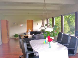 Large apartment close to legoland - 6-12 persons - Give vacation rentals