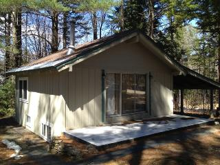 Bartlett chalet near Attitash & White Mountains 113928 - Bartlett vacation rentals