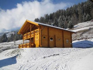 Luxury 3 Bed Private Chalet near ski area - Umberleigh vacation rentals