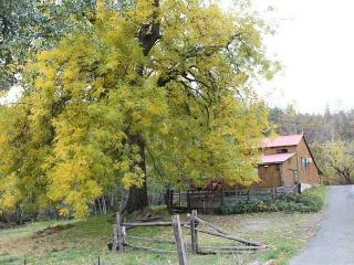 Historic Creekside Barn House in N. California - Igo vacation rentals
