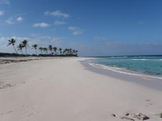 Two Dunes - Secluded beach at your door - Eleuthera vacation rentals