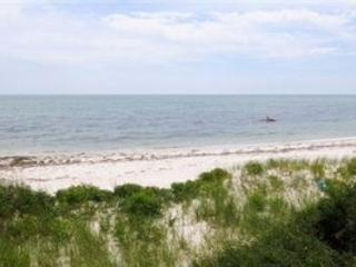 Deeded beach rights on sandy Nantucket Sound - Stuning Vacation Home - Hyannis Port - rentals