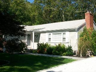 Immaculate Home great for relaxing and entertaining. - Osterville vacation rentals